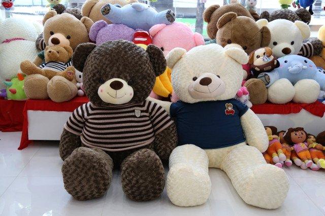 Gấu bông cũng là một trong những món quà được nhiều người lựa chọn