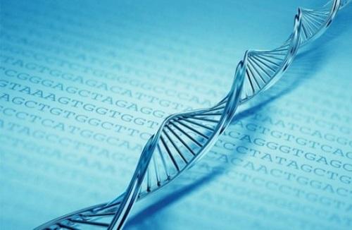 Một số bệnh di truyền lặn thường gặp ở người